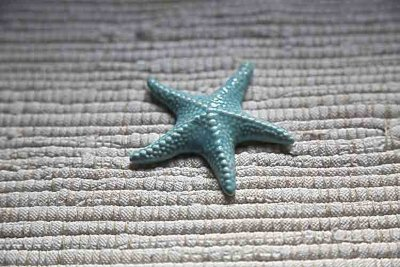 Porcelain sea star