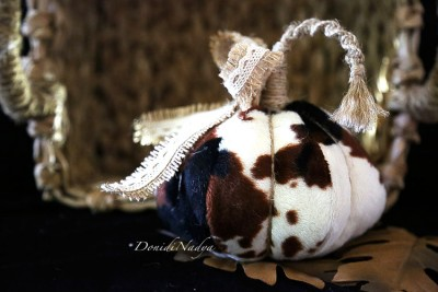 Fur fabric cow pumpkin