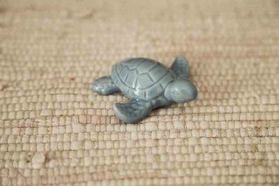 Porcelain turtle