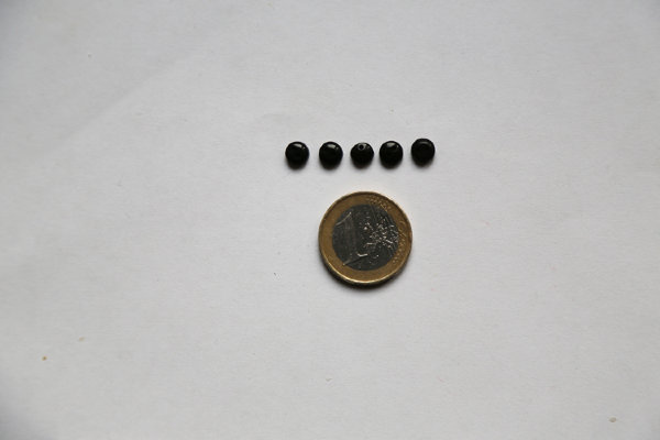 Buttons miniature black